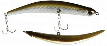 bent-minnow-t23_enl